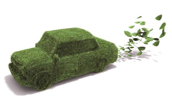Sunny Cars overzichtelijk en voordelig