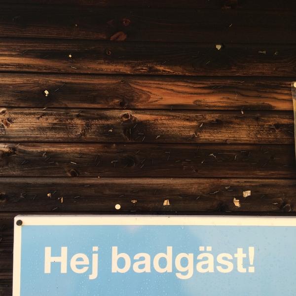 Zweedse-tekst