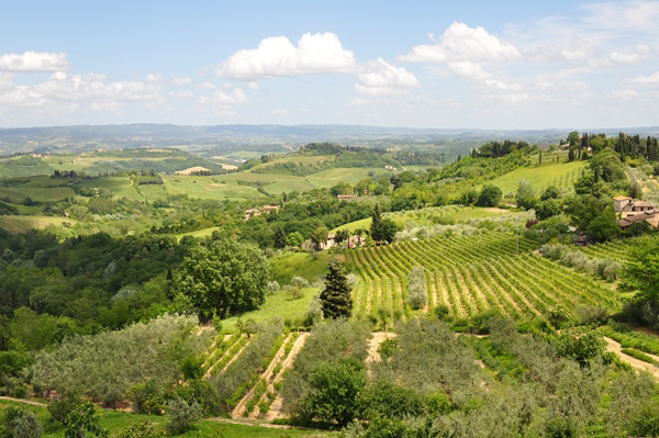 toscane uitzicht wijnvelden