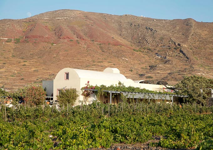 domaine sigalas oia santorini wijnmaker