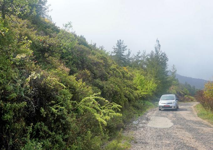 groen cyprus griekenland rijden door de bergen