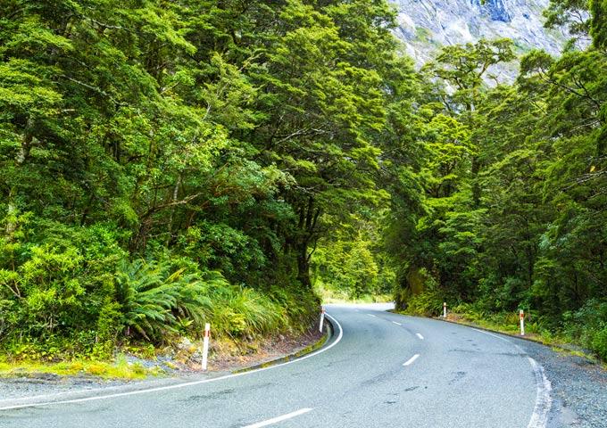 top 5 routes milford road nieuw zeeland