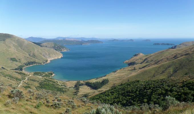 uitzicht-nieuw-zeeland-roadtrip
