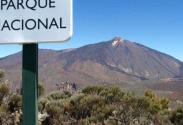 Tot grote hoogte op Tenerife
