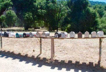 Roadtrip door afwisselend en zonnig Californië