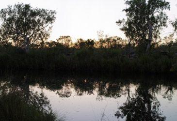 Tips van reisexpert Moniek: Australië