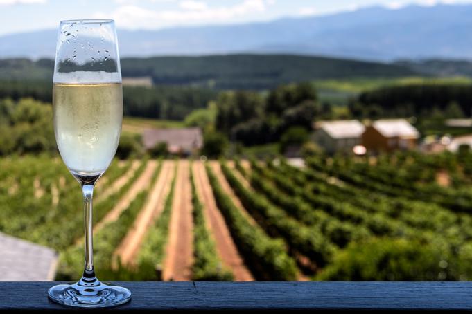 Wijnproeven in Catalonië