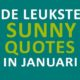 """De quotes van januari -""""De hond mag mee, maar niet als bestuurder"""""""