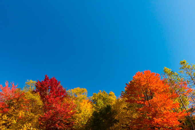 Indian Summer in Canada