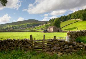 Swaledale Yorkshire Engeland