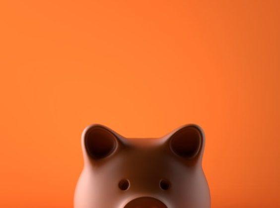 Weet wat je betaalt in euro's met deze app