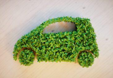 Help jij mee de wereld een stukje groener te maken?