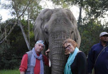 Marjolein: Mijn favo' fly drive is Zuid-Afrika!