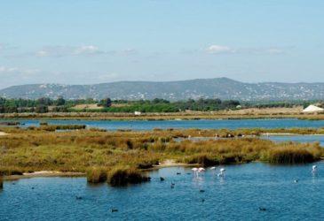 De Algarve en toch weg van de massa