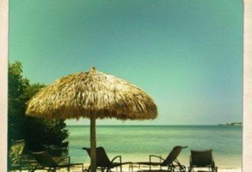 9 dingen die ik leerde op mijn road trip door Florida