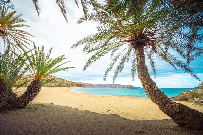 Strand met palmbomen in Griekenland