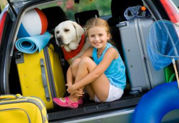 10 tips voor een relaxte fly-drive met kinderen