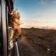 6 kijktips voor het ultieme vakantiegevoel