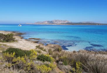 Bella Alghero… 4 tips op het Italiaanse eiland Sardinië