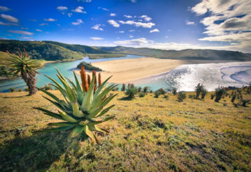 5 Instagramwaardige autoroutes in Zuid-Afrika