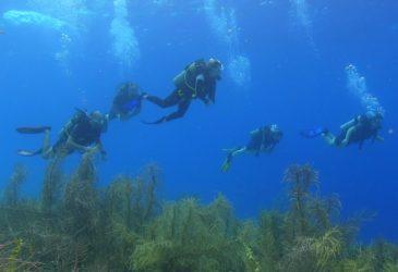 6 tips voor Curaçao