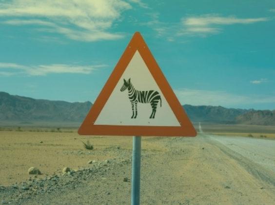 De 8 opvallendste verkeersregels in populaire roadtriplanden